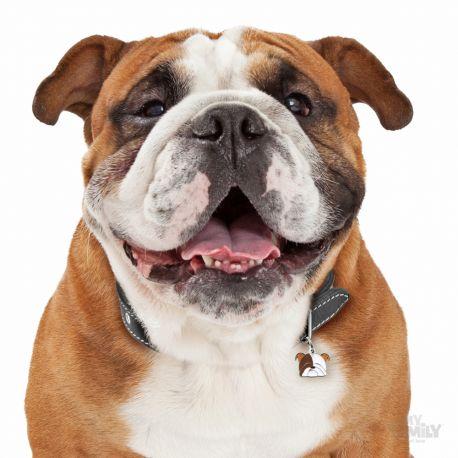 Médaille Friends Bulldog Anglais