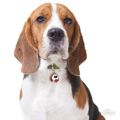 Médaille Friends Beagle