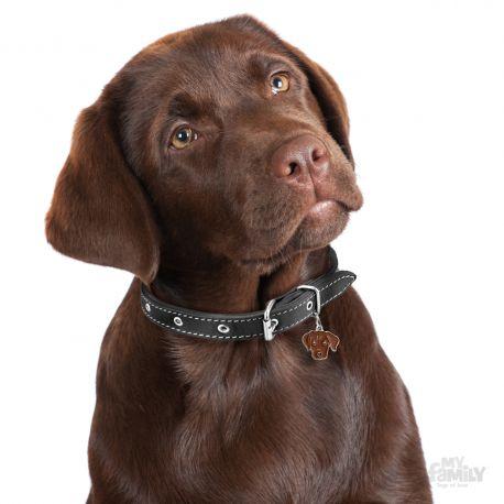 Médaille Friends Labrador Chocolat