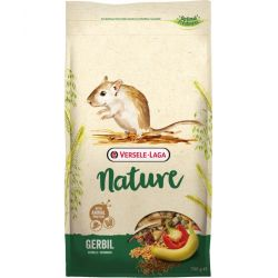 Nature Gerbil