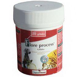 Flore Process Chien