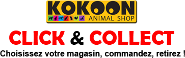 Click and Collect Kokoonshop