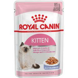 Royal Canin Kitten en gelée 12x85g